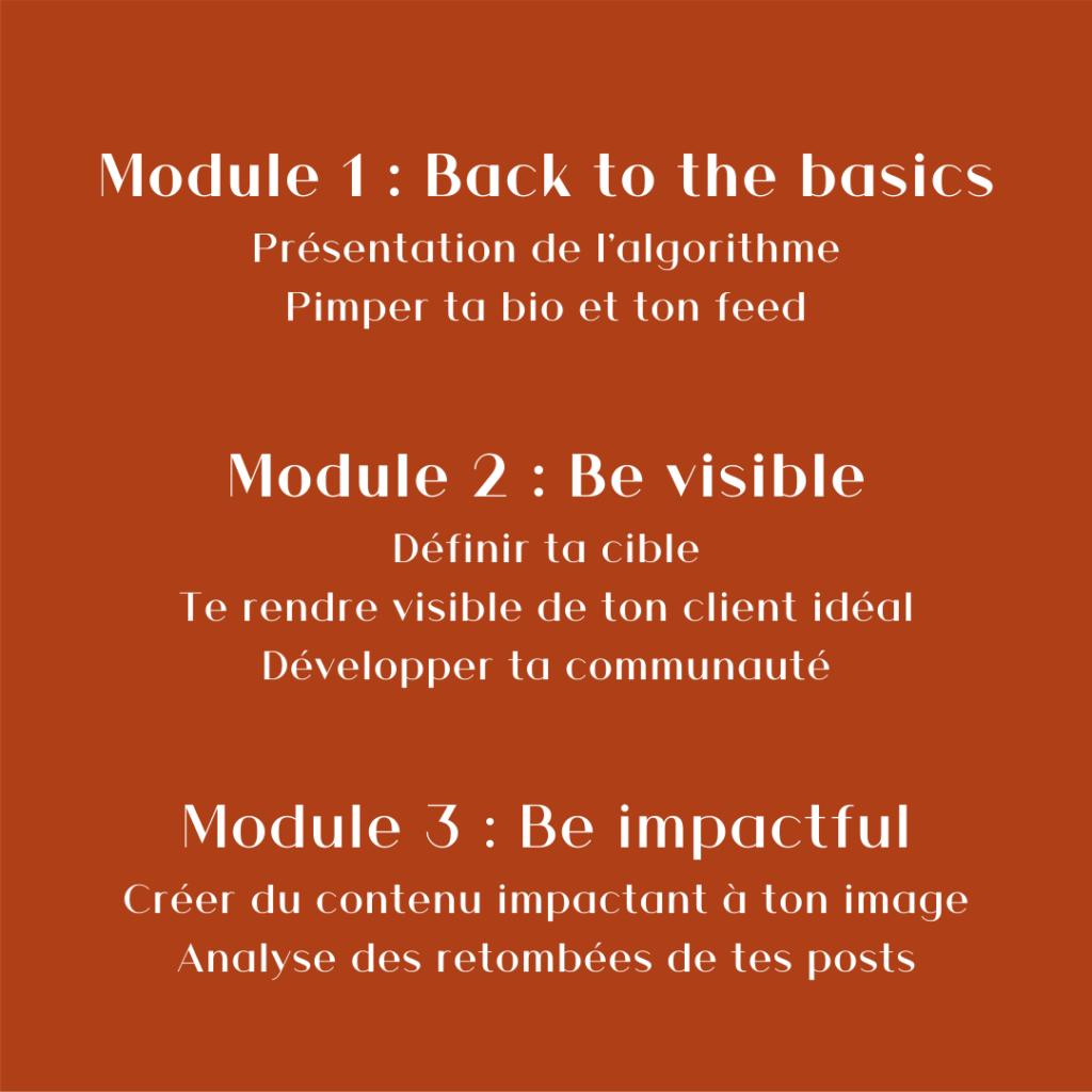 photo décrivant les modules du coaching Instagram pro de Ma Marque, Ma Com'